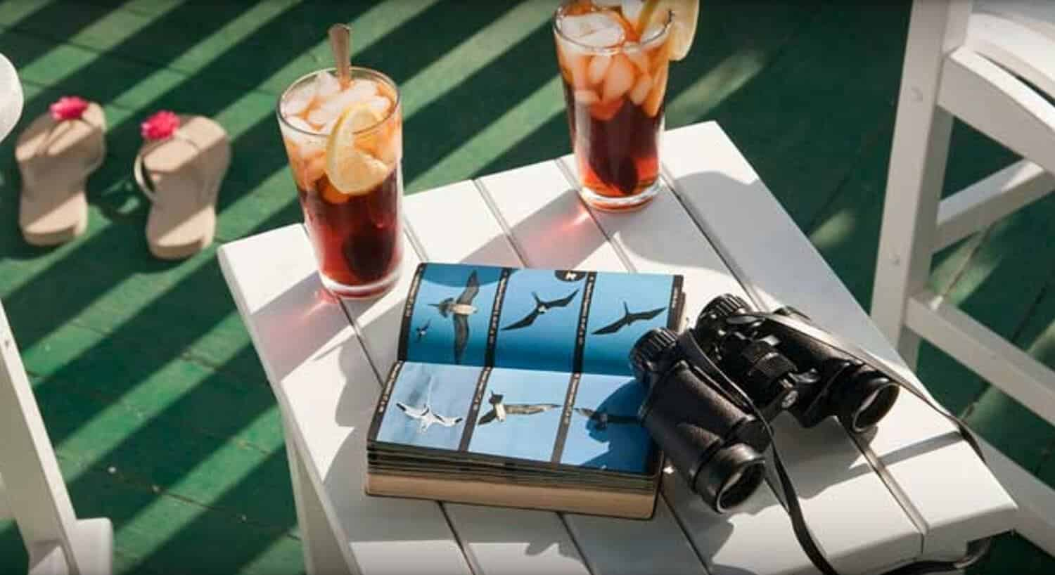 Two glasses of iced tea, a bird book and binoculars ona table between two patio chairs.